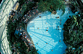 View inside an indoor swimming pool, Bispingen, Lower Saxony, Germany