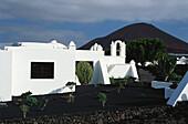 Fundación César Manrique, Tahiche, Lanzarote, Canary Islands, Spain