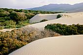 Shifting sand dune, Punta Paloma, near Tarifa, Costa de la Luz, Province of Cadiz, Andalusia, Spain
