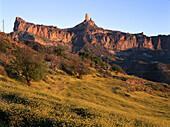 Rape field before Roque Nublo near Tejada, Gran Canaria, Canary Islands, Spain