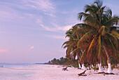 Strand, Karibikkueste suedl. Tulum, Quintana Roo Halbinsel Yucatán, Mexico