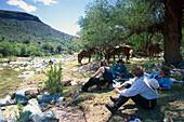 Lunchtime, Cave Creek, Arizona USA