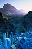 Masca canyon, Teno, Tenerife, Canary Islands, Spain