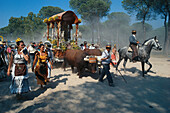 Pilgrims travelling afoot, on horseback and with oxcarts on the Raya Real, Andalusia, Spain