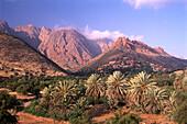Mountain Landscape with palm trees, Tafraoute, Anti Atlas, Marocco