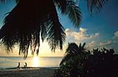 Sonnenuntergang, 7-Mile Beach, Grand Cayman Cayman Islands, Karibik