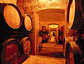 Bodega Jaume Mequida, Wine Cellar with wine barrels, Binissalem, Majorca, Spain