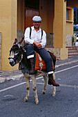 Pilgrim riding a donkey on a street, Romeria de San Isidro, Nerja, Costa del Sol, Malaga province, Andalusia, Spain, Europe