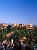 View from Mirador San Nicolas, Albayzin, to the Alhambra, Moorish palace, Granada, Andalusia, Spain