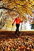 Young woman Nordic Walking, Nordic Walking, Herbst, Young Woman, Nordic Walking, Voralpenland, Germany, Junge Frau, Nordic Walking, Herbst, Voralpenland Oberambach am Starnberger See, 2005