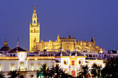Cathedral with Giralda, Plaza de Toros, bullfighting ring, townscape, Seville, Andalusia, Spain