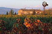 Landhaus, Weingut, Provence Frankreich