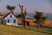 Holzhaus und Küstenlandschaft in der Abendsonne, Sonoma Coast State Beaches, Sonoma County , Kalifornien, USA, Amerika