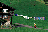 Cyclist passing farmhouse with clothesline, Hinterthal, Muotathal, Schwyz, Switzerland
