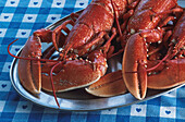 Two lobsters on a plate, Alderney, Channel Islands, Great Britain
