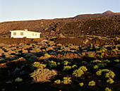 Volcanic landscape with country house, Fuencaliente, La Palma, Canary Islands, Spain