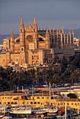 Kathedrale und Yachthafen, Palma, Mallorca Spanien