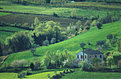 House in the countryside, near Sogliano, Emilia Romagna, Italy