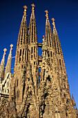 Türme, La Sagrada Familia, von A. Gaudi, Barcelona Katalonien, Spanien