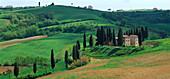 Landhaus und Zypressen in der nähe von Torrita di Siena Toscana, Toscana, Italien