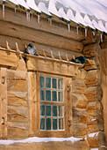 Wooden house in Kolomenskoye, Moscow Russia