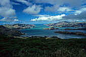 Banks Peninsula, near Christchurch, NZ, the extinct vulcanic crater offers views from the hills onto the many harbours and bays, east coast South Island near Christchurch