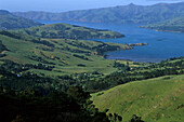 Banks Peninsula, near Christchurch, NZ, Harbour, Banks Peninsula, the extinct vulcanic crater offers views from the hills onto the many harbours and bays, east coast South Island near Christchurch