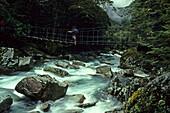 Hiker on ropebridge crossing a river, Routeburn Track, Mount Aspiring National Park, New Zealand, Oceania