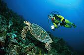 Taucher und Schildkroete, Malediven Indischer Ozean, Released