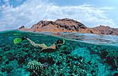 Schnorcheln vor Komodo, Skin Diving near Komodo, S, Skin diver