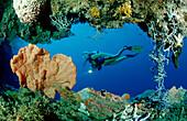 Taucher vor Unterwasserhoehle, scuba diver and unde, scuba diver and underwater cave