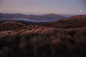 View Tongariro NP, View from Ketetahi Hut across to Lake Rotoaira, at sunset, volcanic landscape, Tongariro National Park, North Island New Zealand, Tongariro Crossing is one of NZ's Great Walks, World Heritage, Erbe der Menscheit, Nordinsel, Neuseeland,