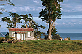 Typical holiday weekend shack at the coast, East Cape, North Island, New Zealand, Oceania