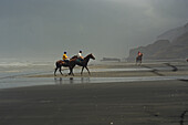 Race horses training on beach, Racing horse on Karioitahi Beach south of Auckland, North Island, New Zealand