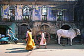 Pedestrians and cow on a street at Margao, Goa, India, Asia