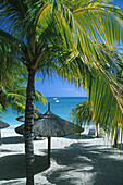Palm trees and sunshades on the beach of Hotel Royal Palm, Grand Baie, Mauritius, Indian ocean, Africa