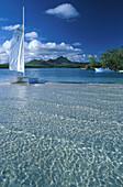 Catamaran in a lagoon, Ile aux Cerf, Mauritius, Indian ocean, Africa