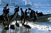 Fischer und Pelikane, Acapulco, Guerrero, Mittelamerika Mexico
