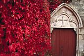 Door with Virginia Creeper, Hotel des Clos, Chablis, Burgundy, France