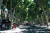Cours Mirabeau, Aix en Provence Provence, France