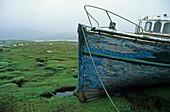 abandoned fishing boat, Loch Scridain, Isle of Mull, Scotland