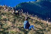 Man watching Alpine Ibex, Swiss Alps, Switzerland