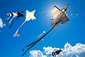International Kite Festival, Norderney, Kitefestival, East-frisian Islands, Lower Saxony, Germany