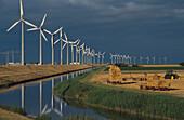 Windpark bei Eemshaven, Emsmuendung Niederlande
