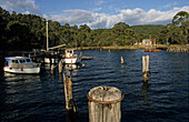Small boats, west coast harbour, Strahan, Australien, Tasmanien, Strahan, boats sheltering in Macquarie harbour, entrance to the Gordon River and West Coast Wilderness