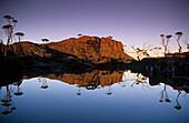 Spiegelung im Wasser, Elysia See, Mount Geryon, Overland Track, Cradle-Mountain-Lake-St.-Clair-Nationalpark, Tasmanien, Australien