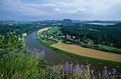 Elba, Rathen, Lilienstein, Natural park, Saxon Switzerland, Elbsandsteingebirge, Saxony, Germany