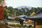 Temples in front of a mountain, Seoul, South Korea, Asia