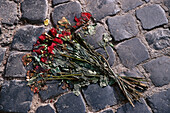 Bunch of roses, Rome, Latio, Italy
