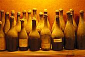 Old Wine bottles, Winery Aldo Conterno, La Morra, Piemonte, Italy